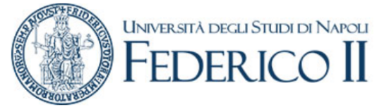Logo of University of Napoli